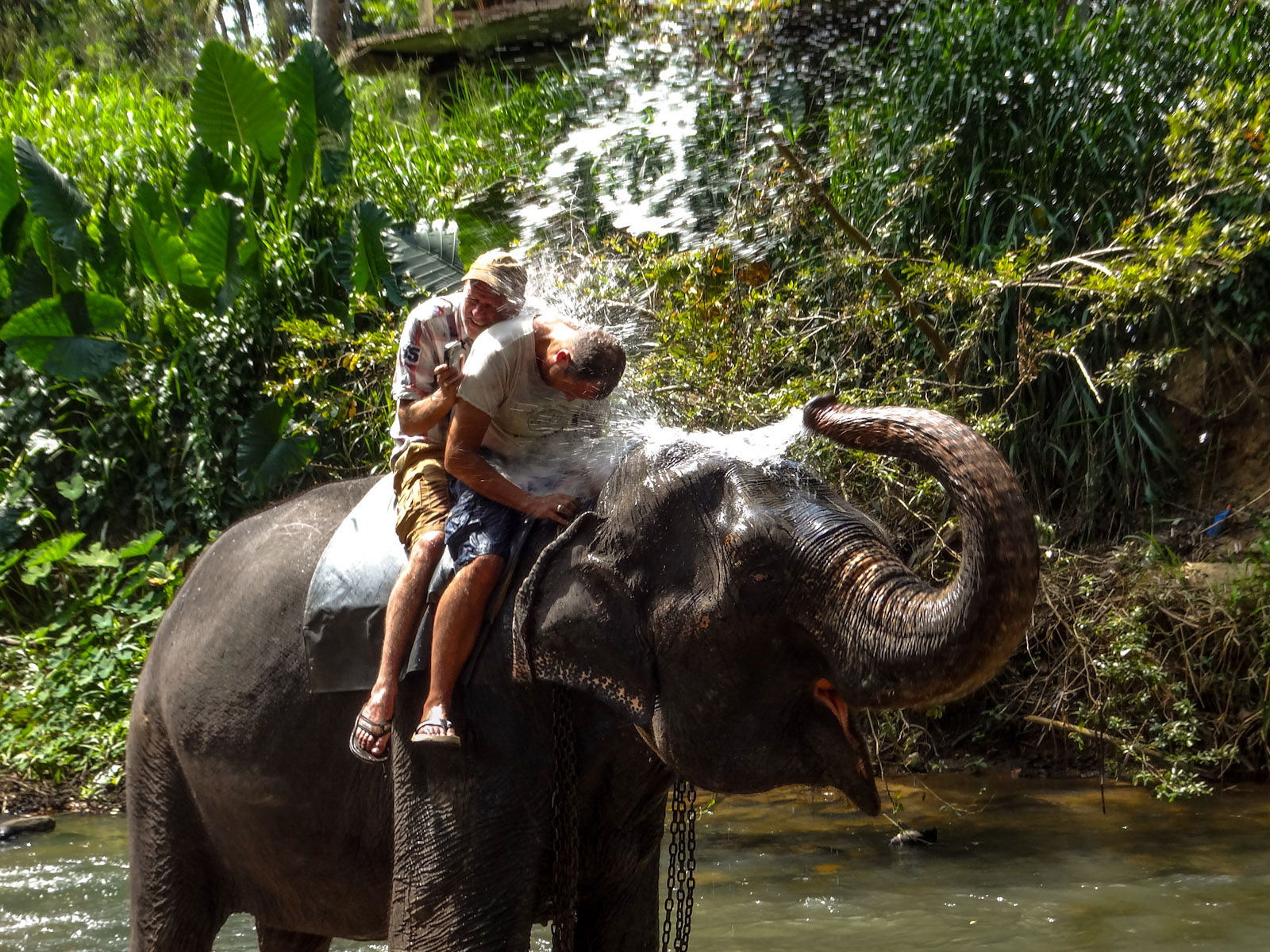 elephant-ride-sri-lanka